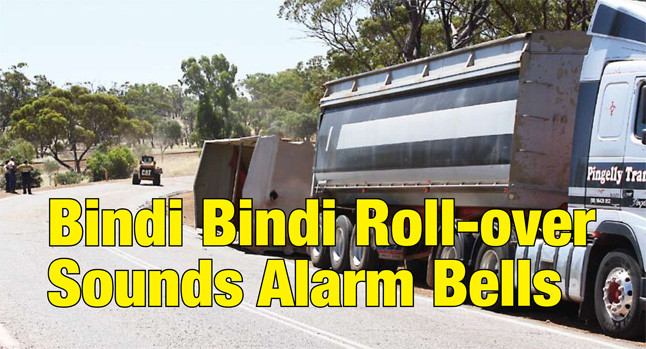 Bindi Bindi roll-over sounds alarm bells